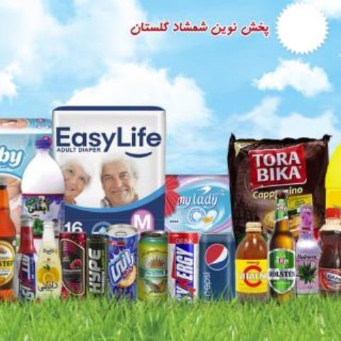 راه اندازی وب سایت شرکت پخش نوین شمشاد گلستان